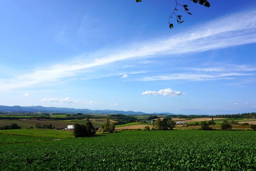 三愛の丘の風景