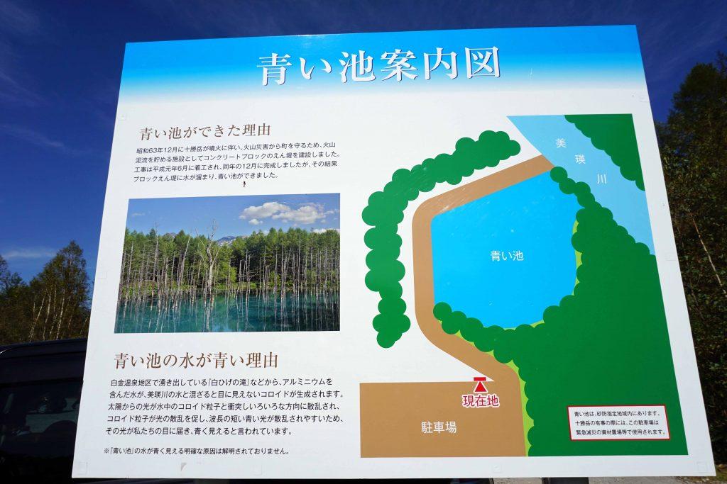青い池案内図