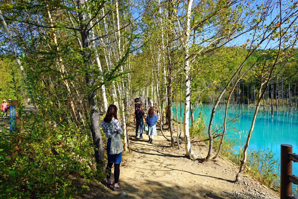 観光客と青い池