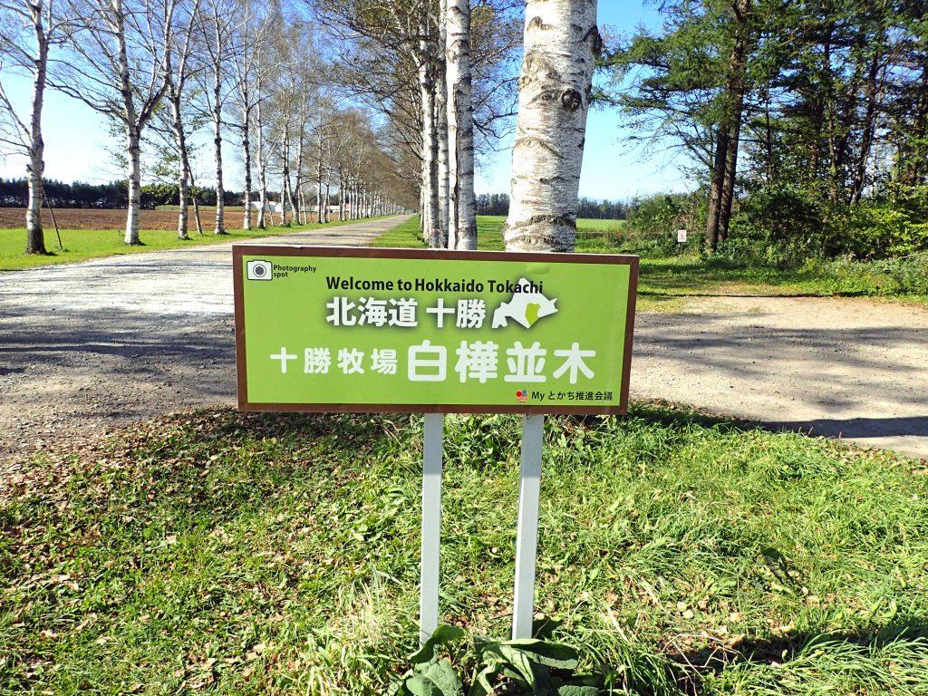 十勝牧場の白樺並木 看板