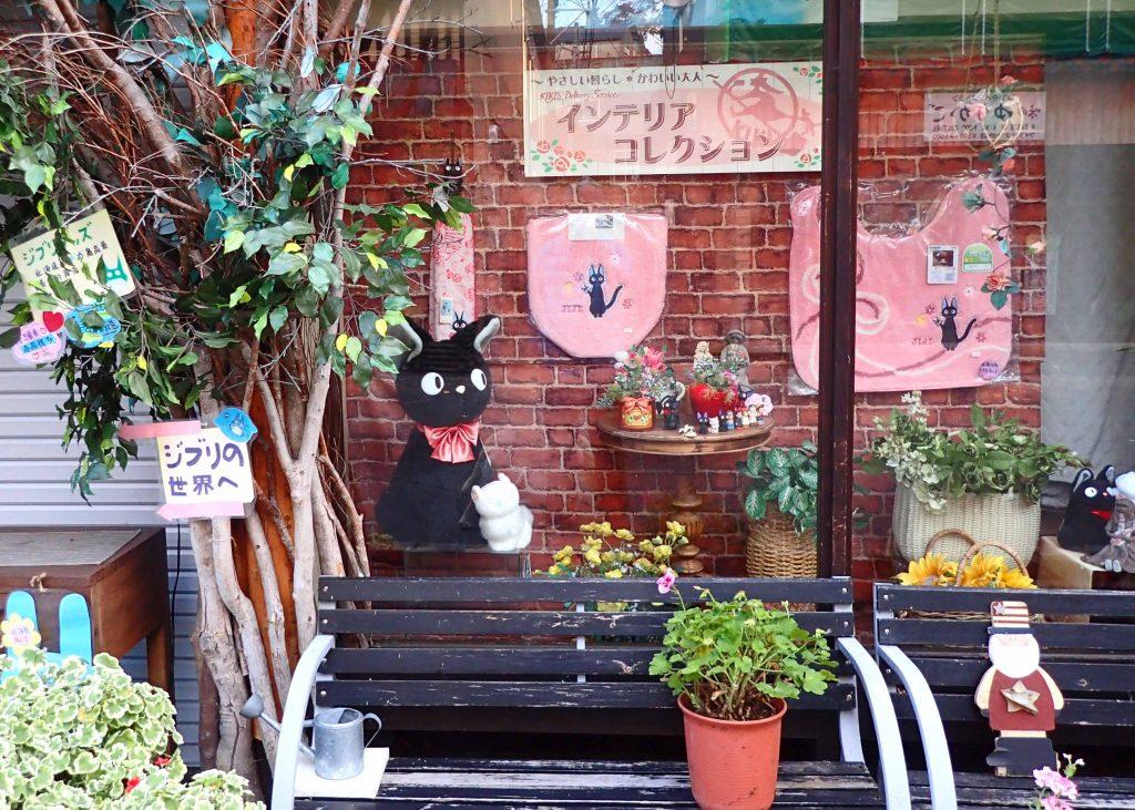 阿寒湖どんぐりの森 黒猫のジジ?